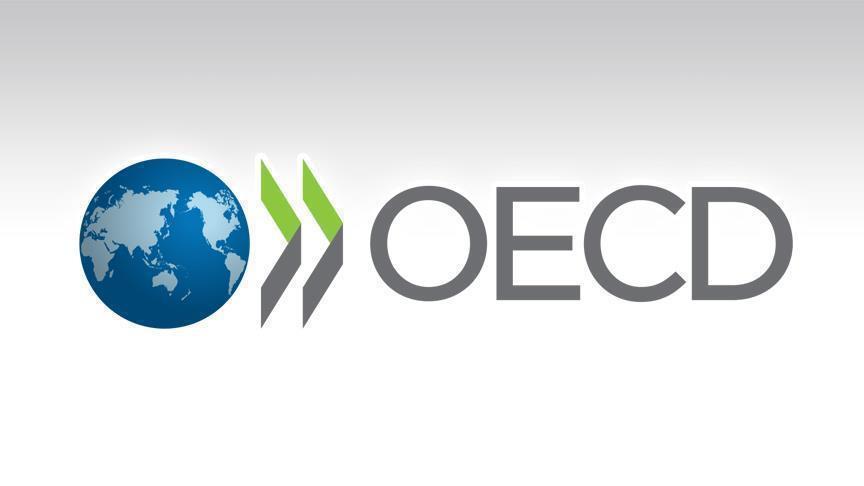 Организация экономического сотрудничества и развития (ОЭСР) опубликовала доклад – «дорожную карту» для измерения цифровой экономики,  подготовленную для рабочей группы G20 по цифровой экономике